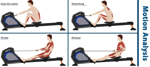 Merax Magnetic Exercise Rower motion analysis